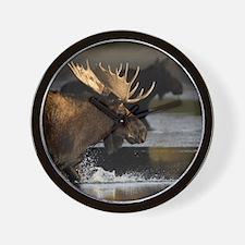 moose splashing in the water Wall Clock