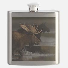 moose splashing in the water Flask