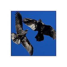 "Raven in Flight Square Sticker 3"" x 3"""