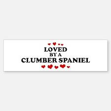 Loved: Clumber Spaniel Bumper Bumper Bumper Sticker