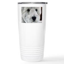 Paddy Bear Travel Mug