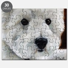 Paddy Bear Puzzle