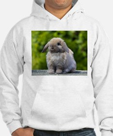 Funny Holland lop Hoodie