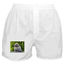 Unique Lops Boxer Shorts