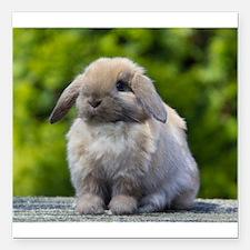 "Cute Rabbit Square Car Magnet 3"" x 3"""