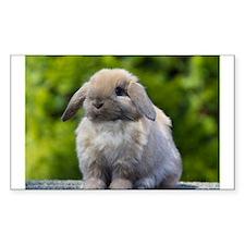 Cute Bunny rabbit Decal