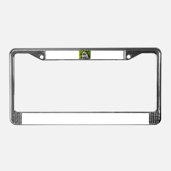 Cute Rabbits License Plate Frame