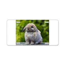 Cute Lop rabbit Aluminum License Plate