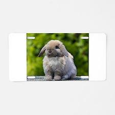 Unique Dutch rabbit Aluminum License Plate