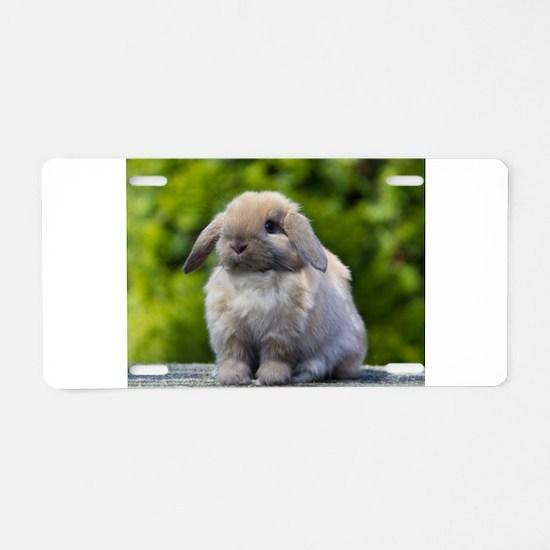 Cute Rabbit Aluminum License Plate