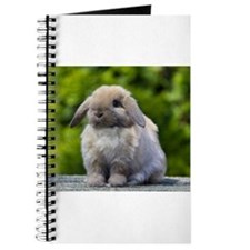 Cool Bunny rabbit Journal
