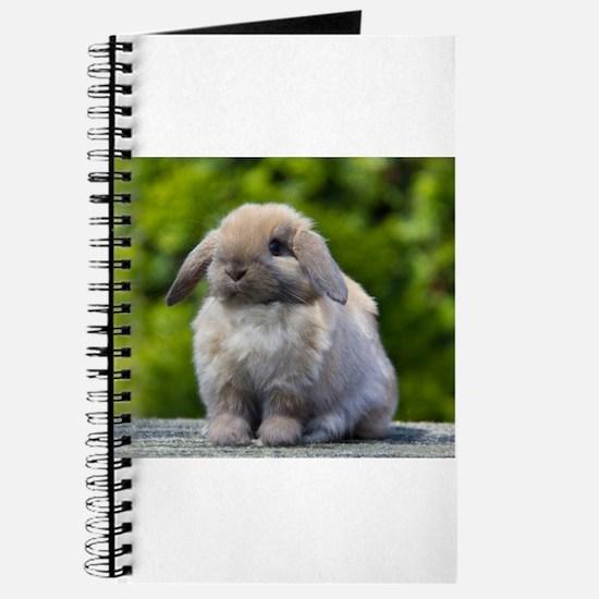 Cute Rabbits Journal
