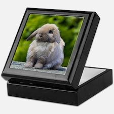Funny Bunny Keepsake Box