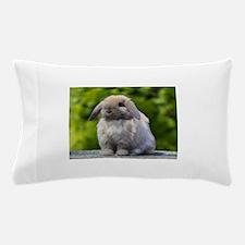 Cute Lop Pillow Case