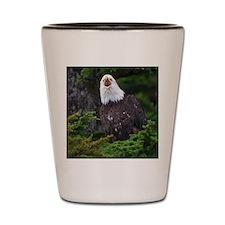 Bald Eagle Shot Glass