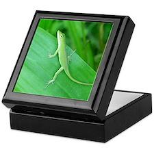 Green Lizard Keepsake Box
