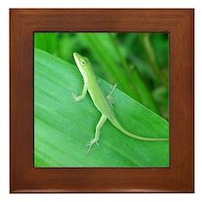 Green Lizard Framed Tile