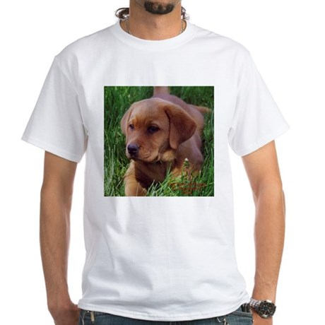 Fox Red Lab Pup White T-Shirt