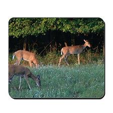 Grazing Deer Mousepad