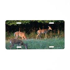 Grazing Deer Aluminum License Plate