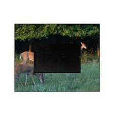 Grazing Deer Picture Frame