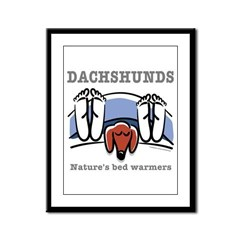 Dachshund bed warmers Framed Panel Print