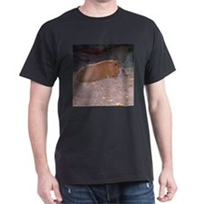 red river hog T-Shirt
