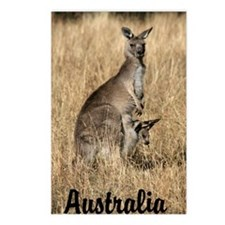 Kangaroo Mum with Joey in Pouch Postcards (Package