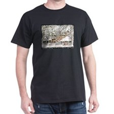 Heavenly Village~South Lake Tahoe T-Shirt