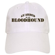 Bloodhound: Guarded by Baseball Cap