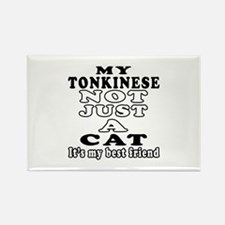 Tonkinese Cat Designs Rectangle Magnet