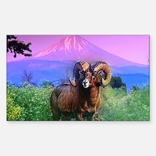 Big Horn Mount McLoughlin Decal