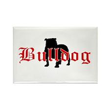 OE Bulldog Type Rectangle Magnet