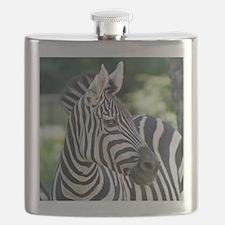 Zebra 001 Flask