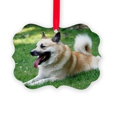 Icelandic Sheepdog Picture Ornament