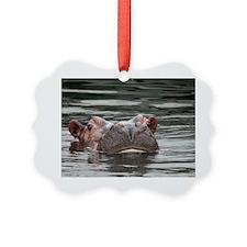 Hippo 001 Ornament