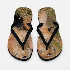The Guardian Flip Flops