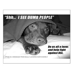American Pit Bull Terrier Posters