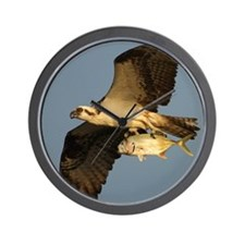 osprey fishing Wall Clock