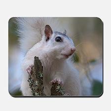 Astronaut Squirrel Mousepad