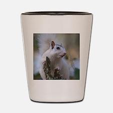 Astronaut Squirrel Shot Glass