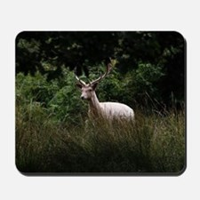 White Stag by Tom Conway Mousepad