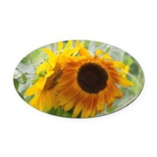 Sunflowers Oval Car Magnet