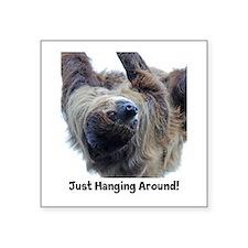 "Just Hanging Around! Sloth Square Sticker 3"""