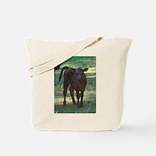 angus calf Tote Bag