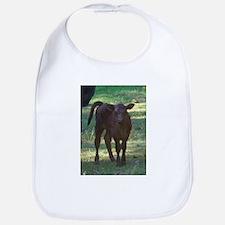 angus calf Bib