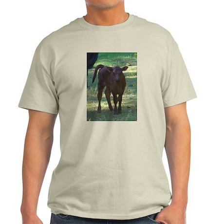 angus calf Ash Grey T-Shirt
