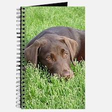 Chocolate Lab Grassmat Journal
