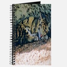 Clouded Leopard series 3 Journal