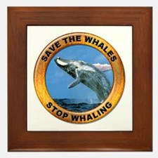 Save Whales Stop Whaling Framed Tile